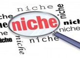 create-niche-website